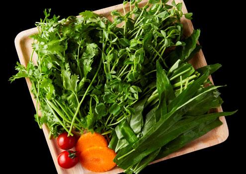 滋養野菜3種盛合せ